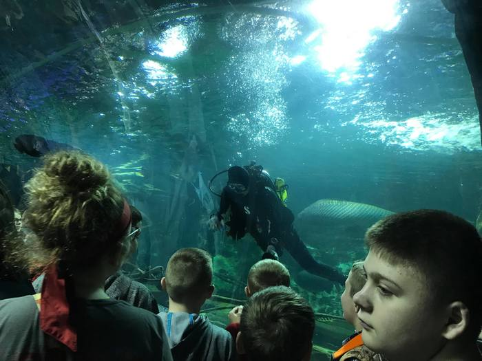 Newport Aquarium 5th Grade 2