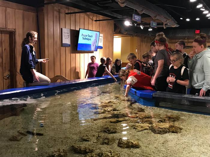 Newport Aquarium 5th Grade 4